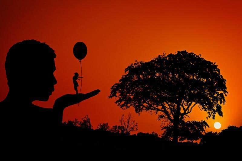 drzewo i zachodzące słońce